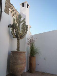 Riad 5-Columns