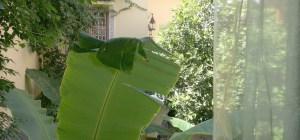 2013 en verde esmeralda